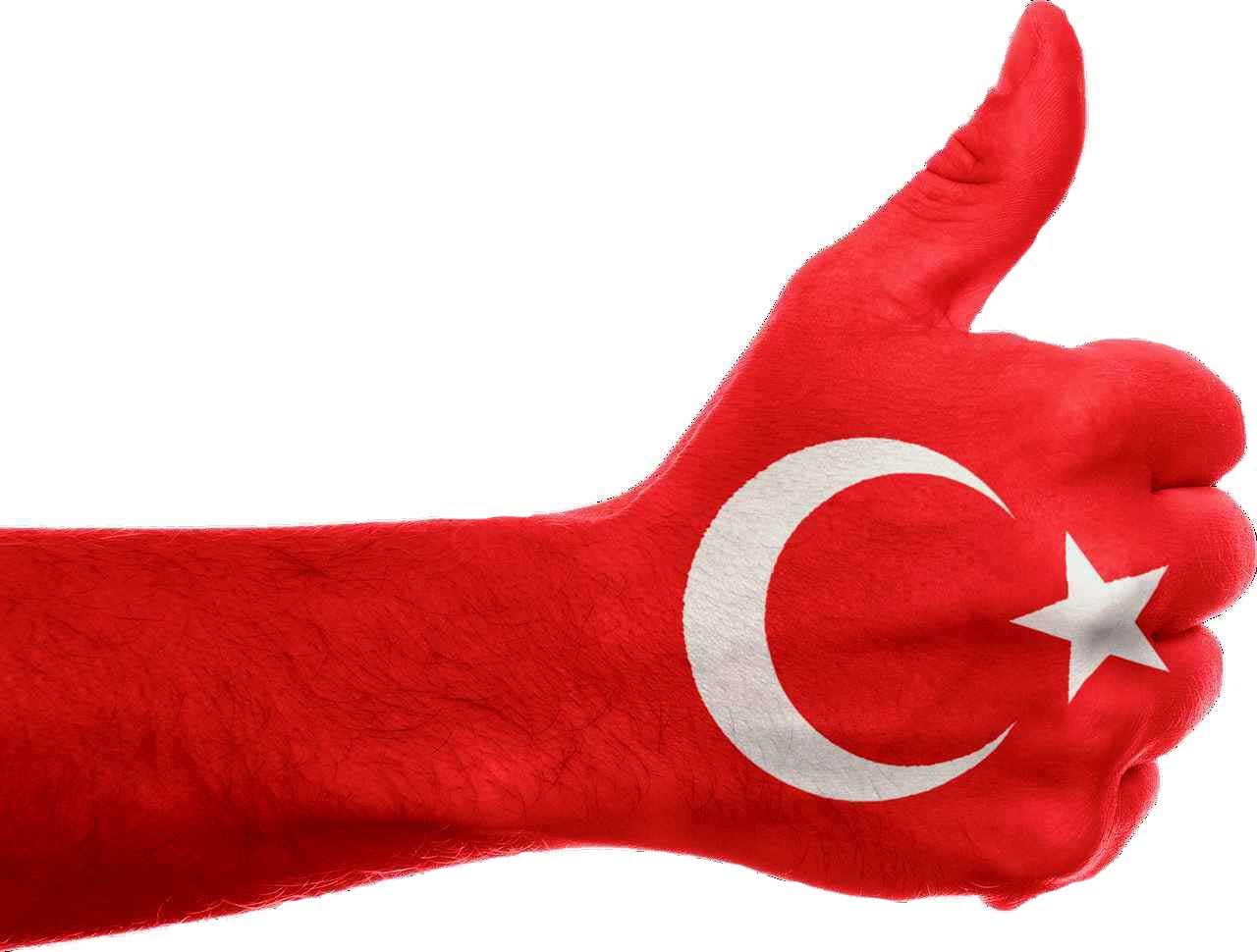 турецкий А1