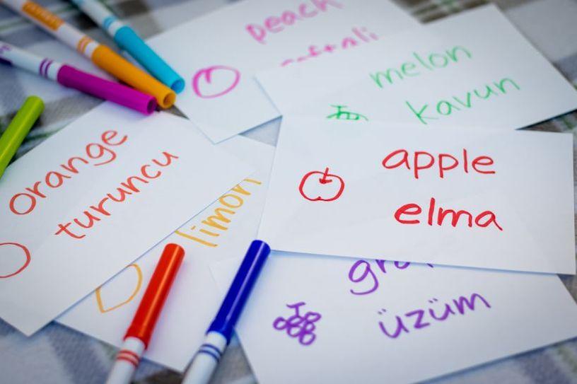 изучение турецкого