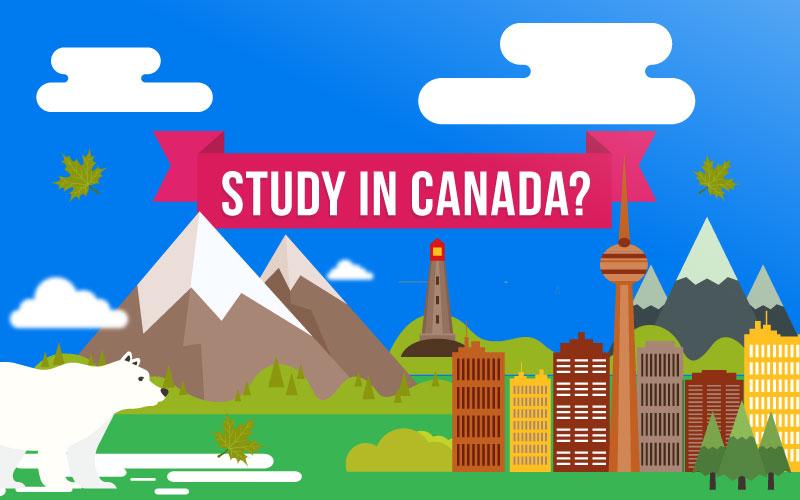 бесплатное обучение в канаде